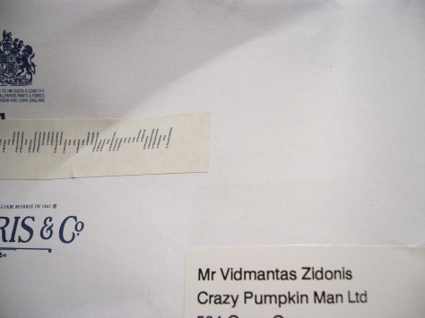 crazy pumpkin man ltd